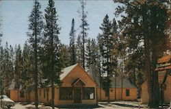 Yellowstone Motor Lodge Postcard