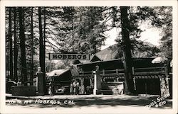 Hoberg's Resort