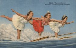 Water Ballet at Beautiful Cypress Gardens Postcard