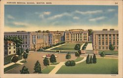 Harvard Medical School Postcard