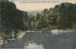 A glimpse of the Mill Valley Reservoir Postcard