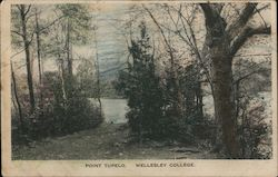 Point Tupelo, Wellesley College Postcard