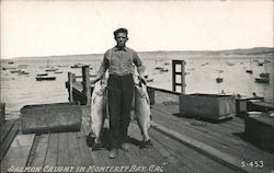 Man With Salmon Caught in Monterey Bay Postcard