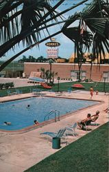 Horne's Motor Lodge Postcard