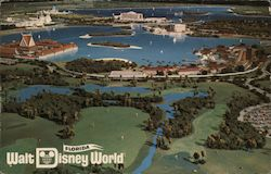 Walt Disney World Resort Postcard