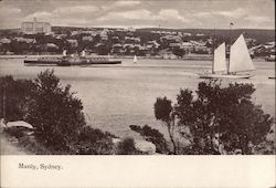 Manly Harbour Postcard