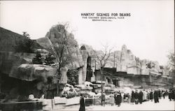 Habitat Scenes for Bears, Chicago Zoological Park