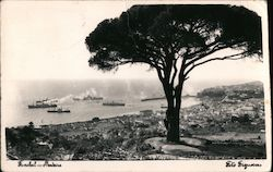 Ships on the Atlantic Ocean - Funchal Postcard