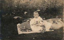 Little J.C. Posing on a Blanket Holding Tree Branch Postcard