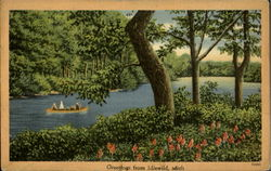 Greetings From Idlewild Postcard