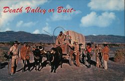 Death Valley Or Bust Postcard
