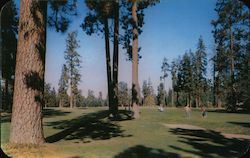 Hayden Lake Golf Course viewed from the 16th hole. Postcard