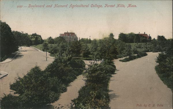 Boulevard and Harvard Agricultural College Forest Hills Massachusetts