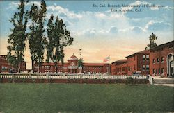 So. Cal Branch, University of California Postcard