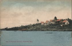 View of Neponset Reservoir Postcard
