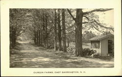 Durgin Farms