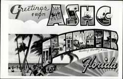 Greetings From A.S.H.C. Clearwater