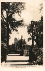 View of the Red Campus University of Missouri Postcard