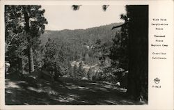 View From Inspiration Point, Thousand Pines Baptist Camp