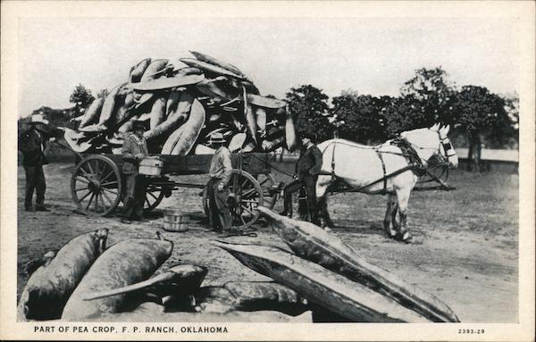 Wagon of Giant Peas - Frank Phillips Ranch Bartlesville Oklahoma