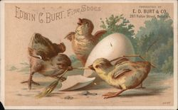 Chicks and Egg: E.D. Burt & Co.
