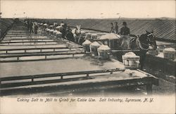 Taking Salt to Mill to Grind for Table Use, Salt Industry Postcard