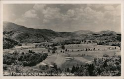 Golf Courses Postcard
