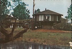 Tree Houses of Hilton Head Sea Pines Plantation Postcard