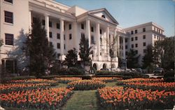 North Facade, The Greenbrier Postcard