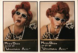 Miss Dish - Caught in the Act Postcard