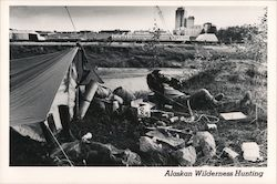 Alaskan Wilderness Hunting Postcard