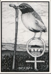 Women are Called Birds Because of the Worms They Pick Up - Janet de Wagt - 1981 Postcard