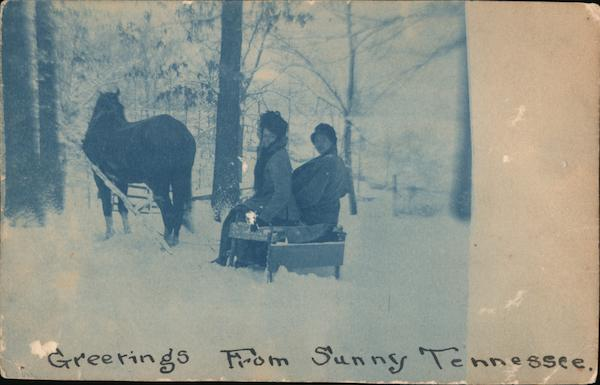 Greetings From Sunny Tennessee Winter Horse Drawn Sled