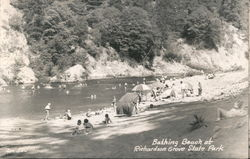 Bathing Beach at Richardson Grove State Park Postcard