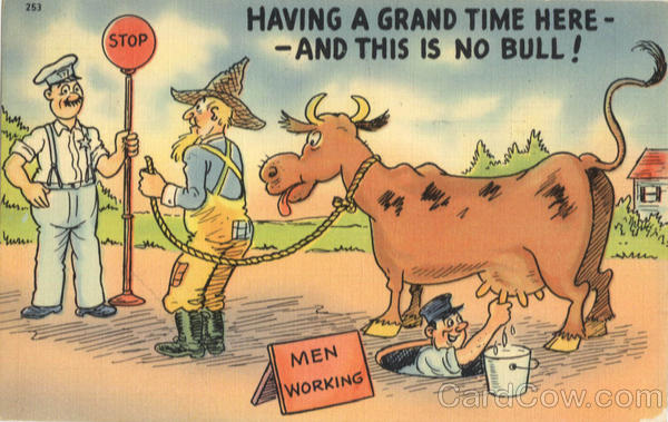 Having a Grand Time Here-And This is No Bull! Comic, Funny