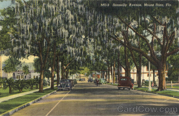 Donnelly Avenue Mount Dora Florida
