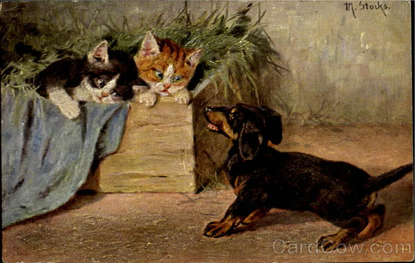 Kittens and Dachshund M. Stocks Dogs
