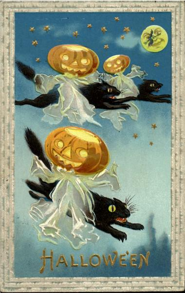 Halloween Cats and JOL's