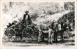 """Old Prospector on his Way to the Diggins"""