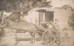 Man Standing in Front of Horse Drawn Buggy