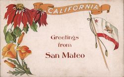 Greetings from San Mateo - State Flag and Flowers Postcard