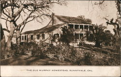 The Old Murphy Homestead