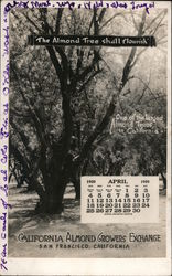 California Almond Growers Exchange April 1920 Calendar