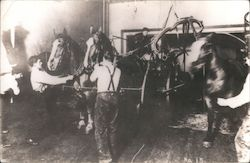 Firemen Working with Horses