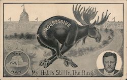 Progressive The Bull Moose Party My Hat Is Still In the Ring The T.R. Hat