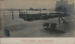 Cliff House Taken after Earthquake and Fire. Postcard
