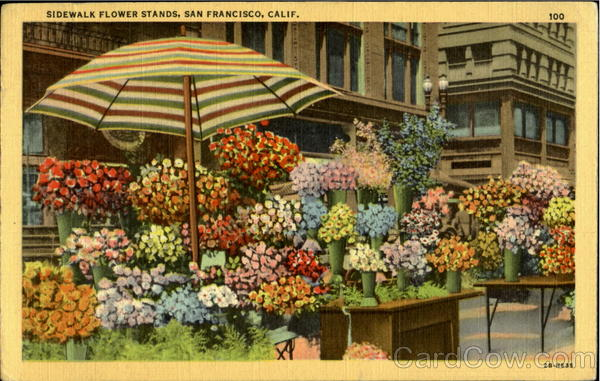 Sidewalk Flower Stands San Francisco California