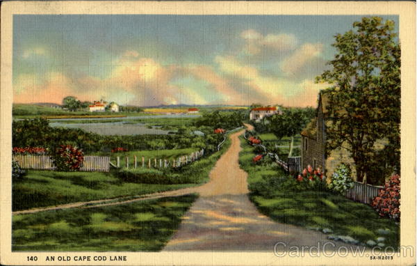 An Old Cape Cod Lane Massachusetts
