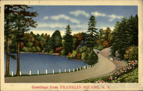 Greetings From Franklin Square New York