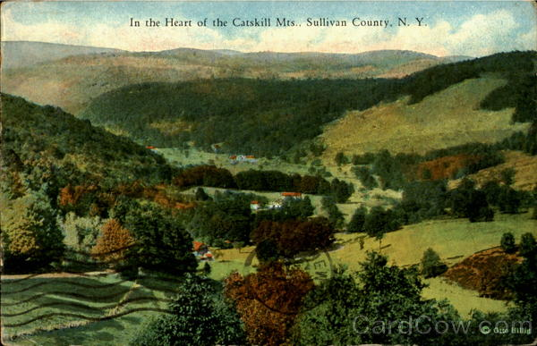 In The Heart Of The Catskill Mts Sullivan County New York